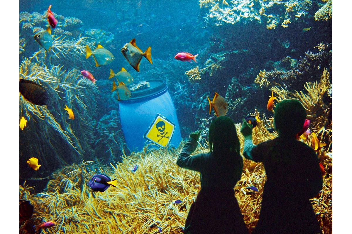 trip_presse_aquarium