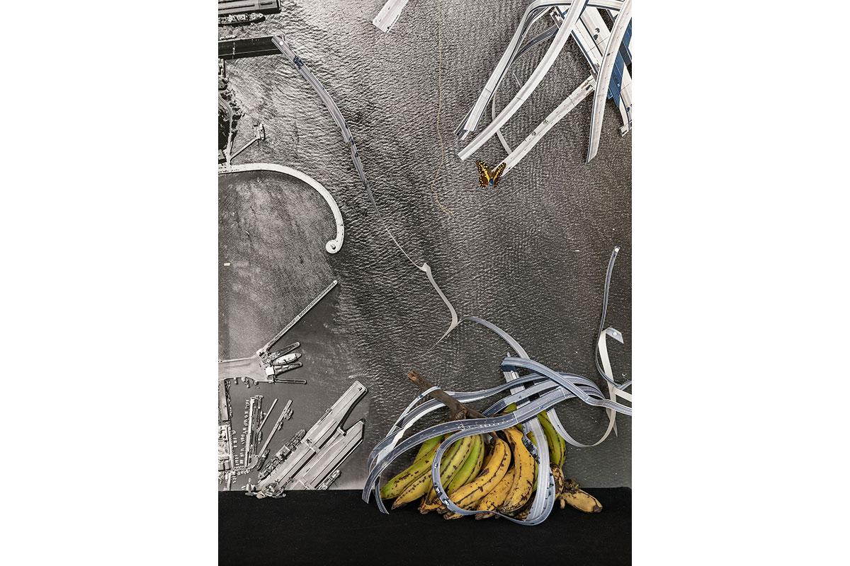 Stilleben-mit-Banane-aus-Guyana_DSC0939_web_1200